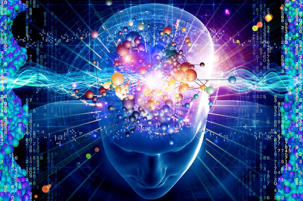 Neuroquimica