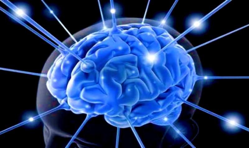 Nootropico_cerebro