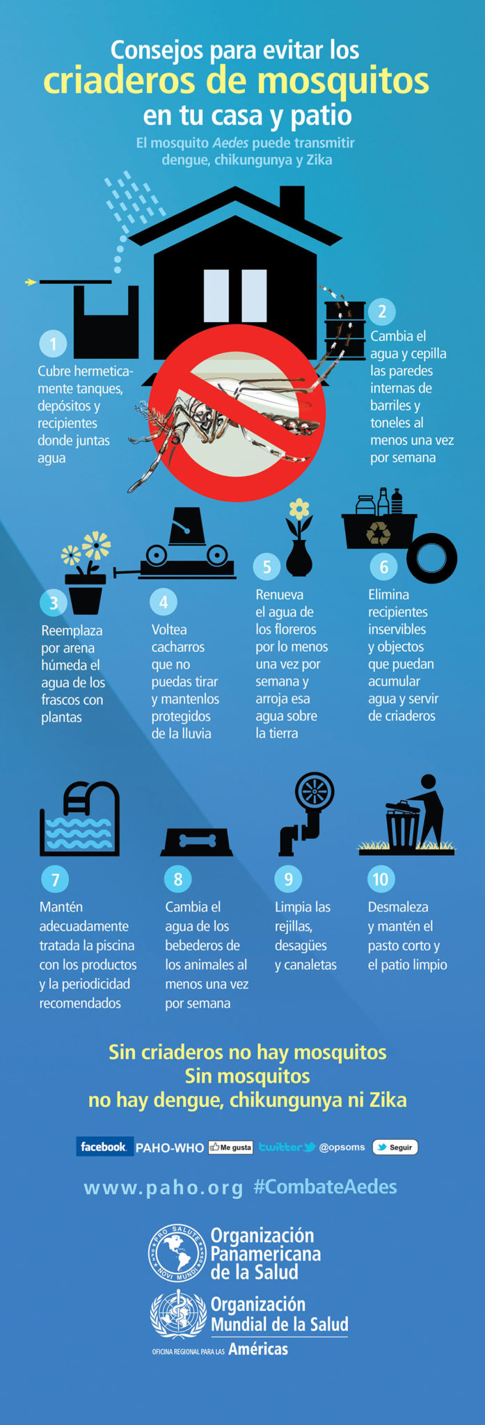 As-prevent-farm-of-Mosquito_Infografia_