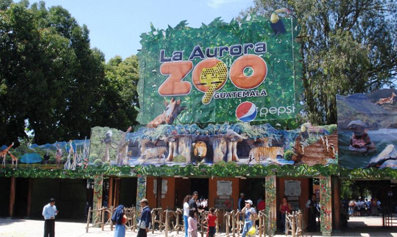 zoologico-la-aurora-wifi-1