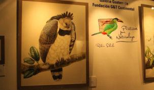 """Exposición """"Pinturas por Naturaleza"""" de Robin Schiele"""