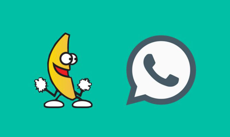 WhatsApp agrega buscador de GIFs para incluir en el chat