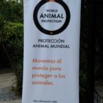 animalprotection_inf
