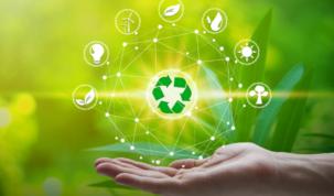 sustenabilidad